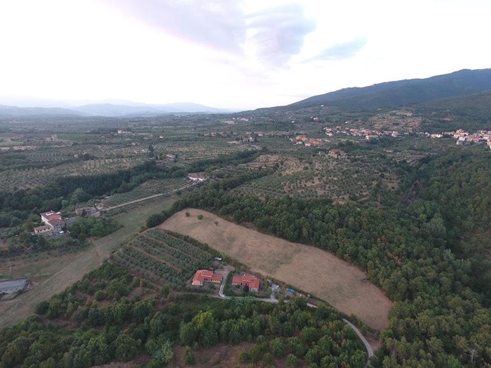 このエリアはワインだけでなく白トリュフの産地としても有名