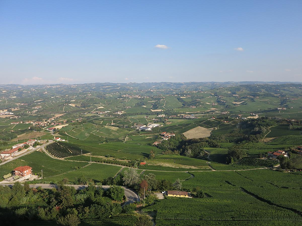 モンフォルテ・ダルバの丘
