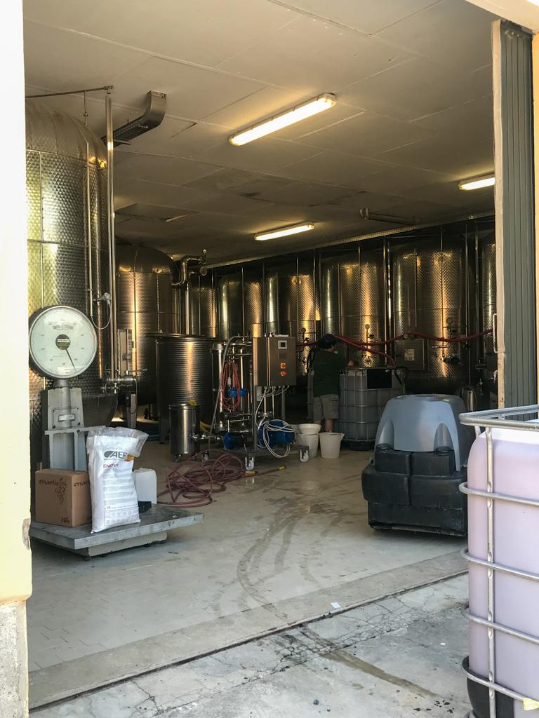 ヴェントゥリーニ・バルディーニのスプマンテは、 ほとんどがシャルマ方式(メトド・シャルマ)によるタンク内で二次発酵を行う製法