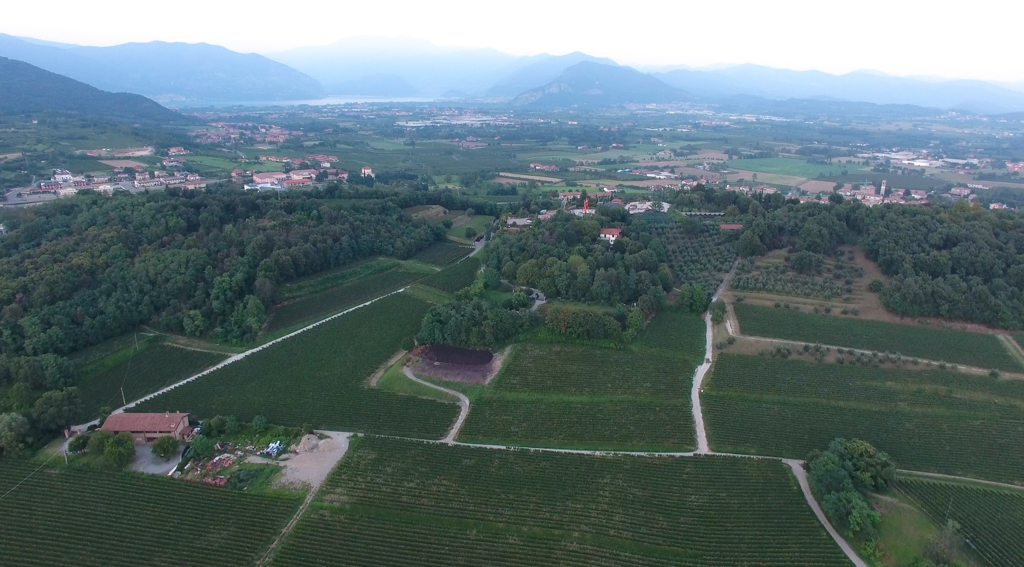 ヴィッラ・クレスピアのワイナリー上空写真